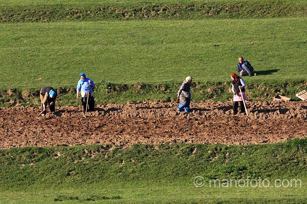 Обработване на земята в Родопите